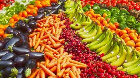 Nutrisi dan Pangan